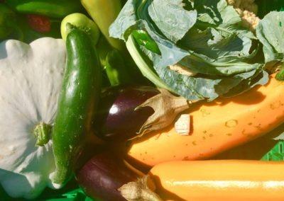 verduras 3